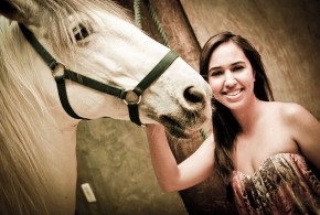 wie Pferde lernen