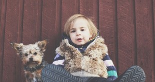 Haustiere ab welchen Alter sinnvoll