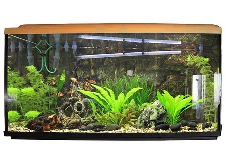 Aquariumabdeckung selbst bauen