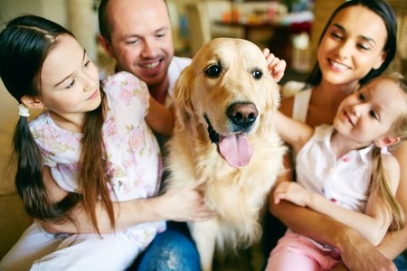 Familienleben mit Hund