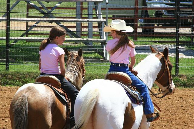 kinderliebe Pferde