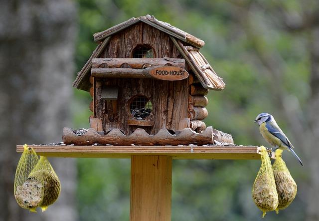 bauanleitung f r ein tolles vogelfutterhaus. Black Bedroom Furniture Sets. Home Design Ideas