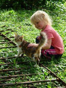 Bild Kind streichelt Katze